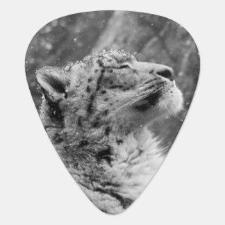 Peaceful Snow Leopard Guitar Pick
