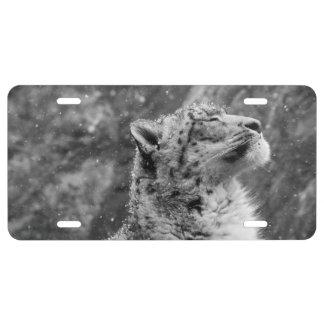 Peaceful Snow Leopard License Plate