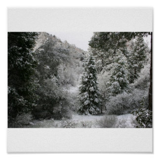 Peaceful Snowy Morning Poster