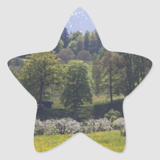 Peaceful Spring in the Country Sticker