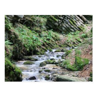 Peaceful Stream Postcard