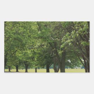 Peaceful treeline road rectangular sticker