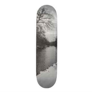Peaceful Winter At James River Grayscale Skateboard