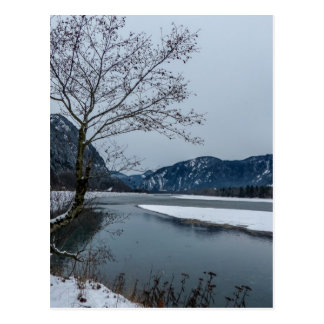Peaceful Winter River Scene Landscape Postcard