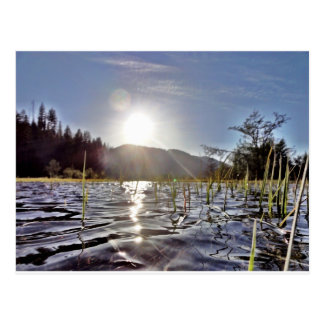 Peacefull Waters in Trout Lake Postcard