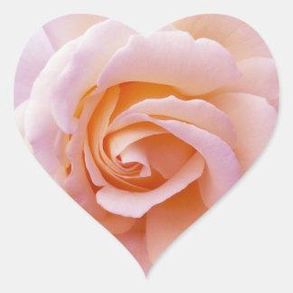 Peach and Pink English Garden Rose Heart Sticker