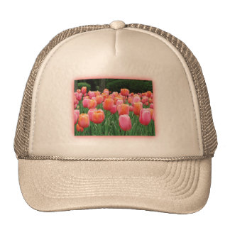 Peach and Pink Tulips Trucker Hat