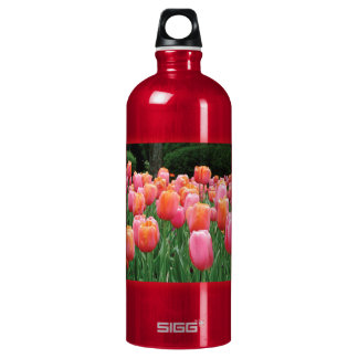 Peach and Pink Tulips Water Bottle