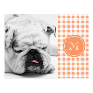 Peach and White Gingham, Your Monogram Postcard