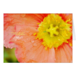 Peach and Yellow Poppy Thank You Card