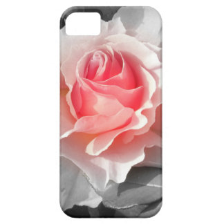 Peach Bliss Rose iPhone SE/5/5s Case