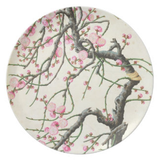 Peach blossom (colour on paper) melamine plate