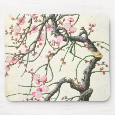 Beach Themed Peach blossom (colour on paper) mouse pad