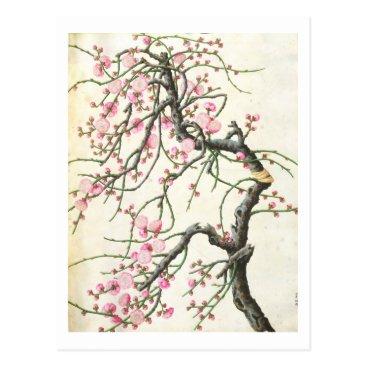 Beach Themed Peach blossom (colour on paper) postcard