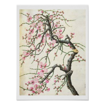 Beach Themed Peach blossom (colour on paper) poster