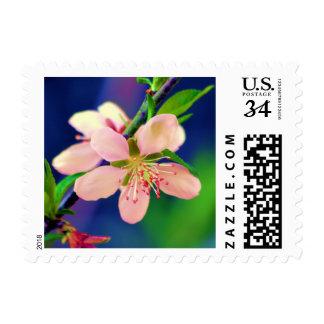 Peach Blossom (Delaware) Postage