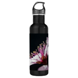 Peach Blossom in the Sunshine on Black Water Bottle