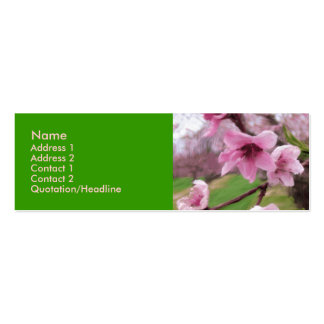 peach_blossoms1 business card