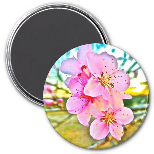 Peach Blossoms 3 Inch Round Magnet