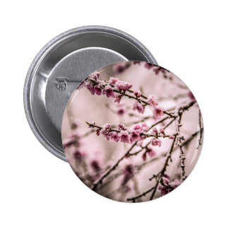 Peach Blossoms Buttons