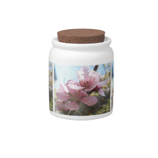 Peach Blossoms Candy Jars
