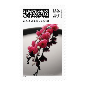 peach blossoms on a black plate postage