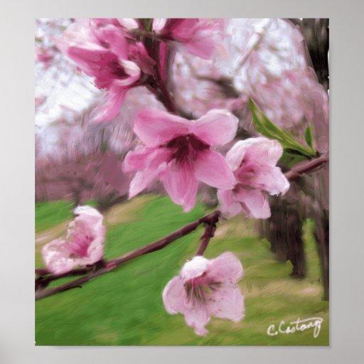 Peach Blossoms Print/Poster