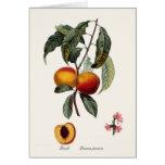 Peach Cards