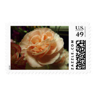 Peach Carnation Stamps