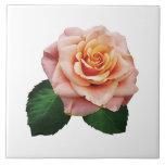 Peach-Colored Rose Ceramic Tile
