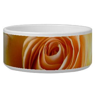 Peach colored rose flower bowl