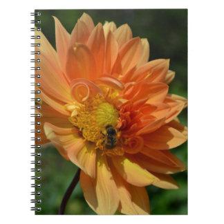 Peach Dahlia Flower and Bee Journal