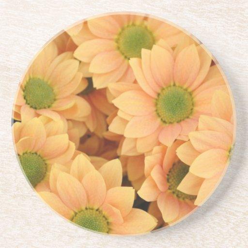 Peach Daisies In Bloom Beverage Coasters