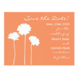Peach Daisy Save the Date Post Cards