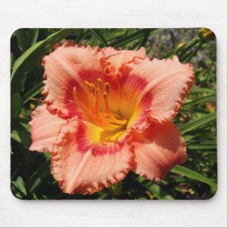 Peach Daylily Mouse Pad