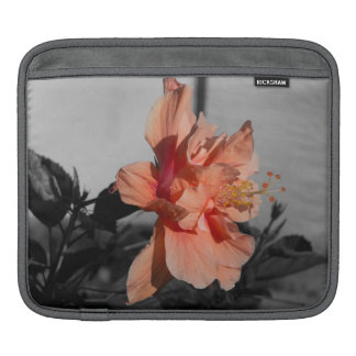 Peach Double Hibiscus Flower Selective Color Photo Sleeve For iPads