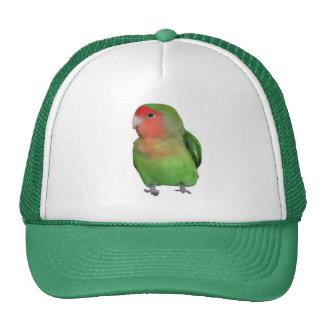 Peach-faced Lovebird Trucker Hat
