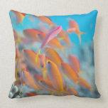 Peach fairy basslet pillows