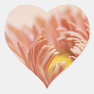 Peach Flower Photograph Heart Sticker