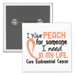 Peach For Someone I Need Endometrial Cancer Pinback Button