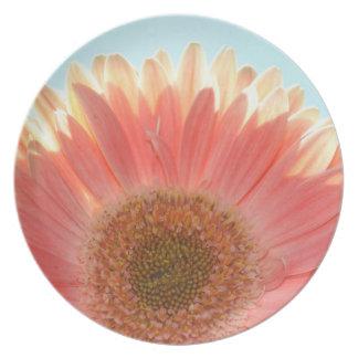 Peach Gerbera Flower Dinner Plate