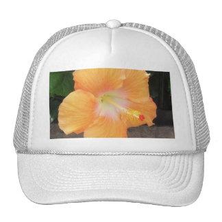 Peach Hibiscus 1 Mesh Hats