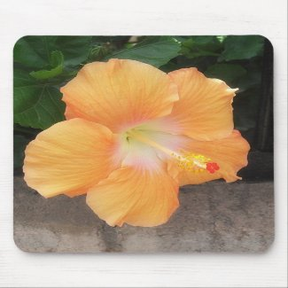 Peach Hibiscus 1 mousepad