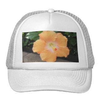 Peach Hibiscus 2 Mesh Hats