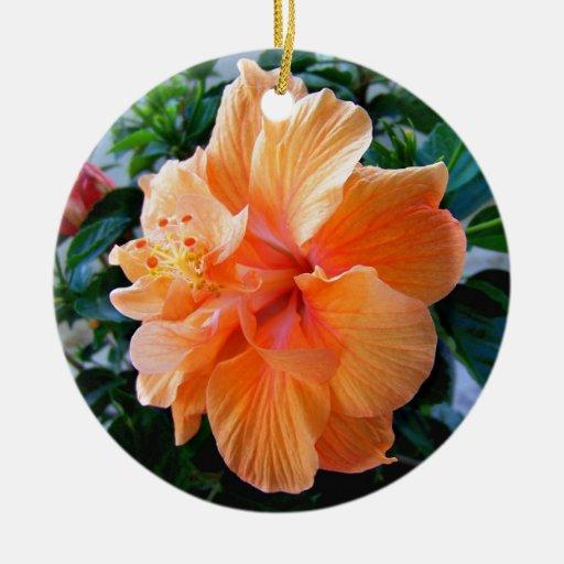Peach Hibiscus Christmas Tree Ornament