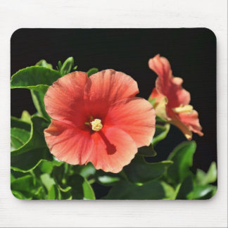 Peach Hibiscus Floral Mouse Pad