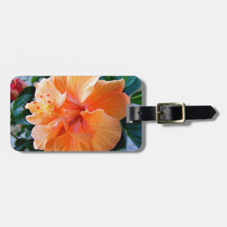 Peach Hibiscus Luggage Tags