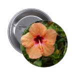 Peach Hibiscus Pinback Buttons