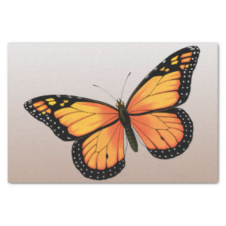 """Peach Ombre Butterfly 10"""" X 15"""" Tissue Paper"""