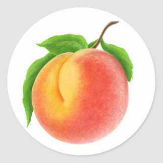 Peach on a branch classic round sticker